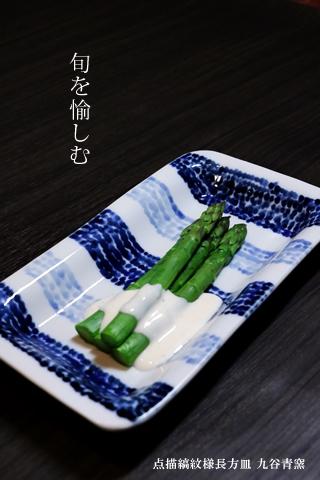 九谷青窯 焼き物皿 長角皿 磁器